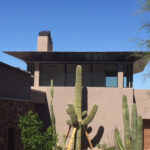Tall Saguaro Inside a Property